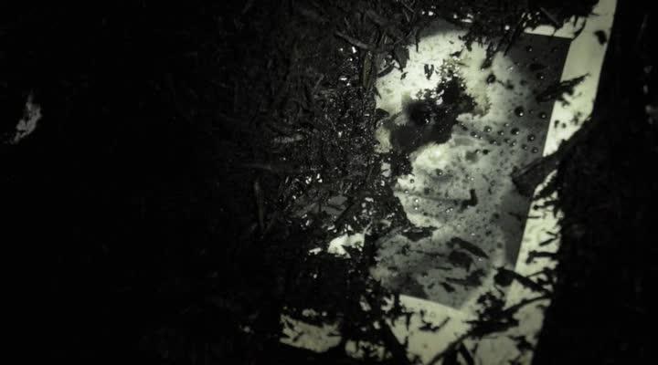 ������ ����� - Dark Feed