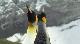 ������ ��������� - The Penguin King 3D