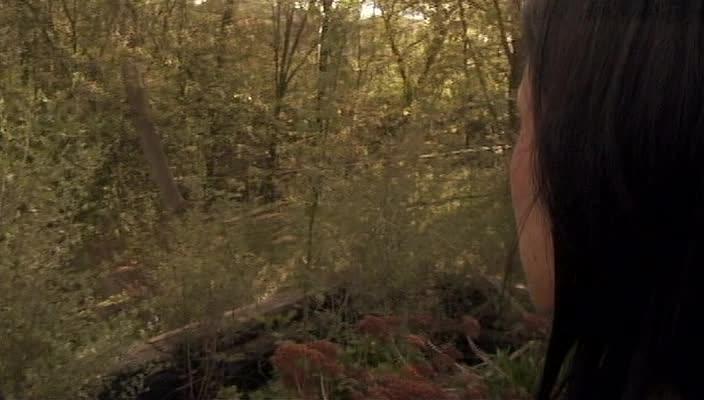 Багровый ручей - Blood Creek