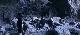 ������ ������� - The Black Dahlia Haunting