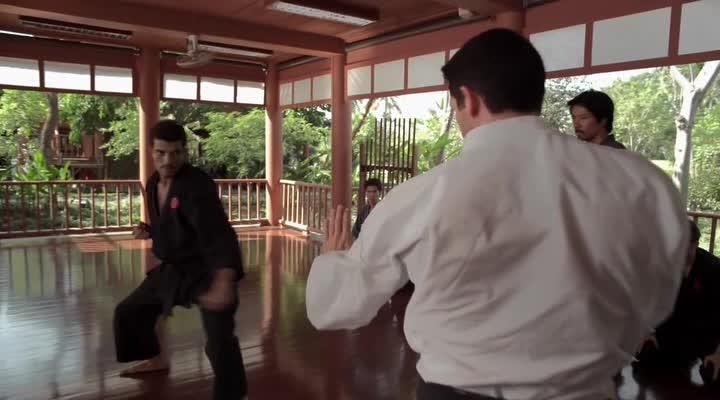 Ниндзя 2 - Ninja- Shadow of a Tear
