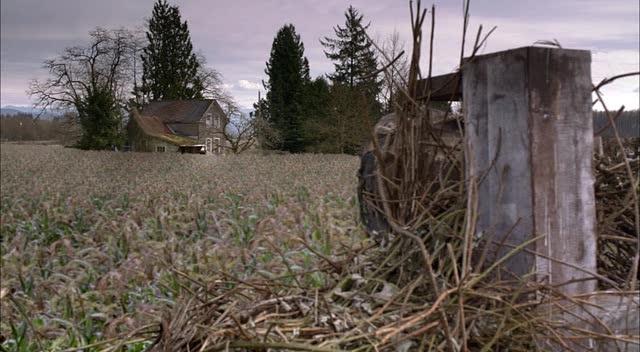 Пугало - Scarecrow