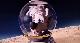 Белка и Стрелка: Лунные приключения