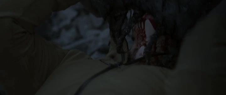 �������� ������ - Blutgletscher
