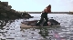 Нападение акул на Нью-Джерси - Jersey Shore Shark Attack