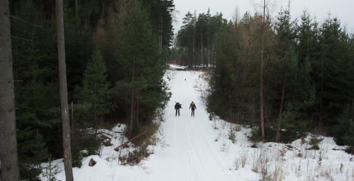 Путешествие в лес - Cesta do lesa
