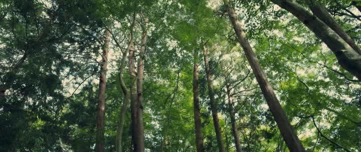 Бродяга Кэнсин: Последняя легенда - RurГґni Kenshin- Densetsu no saigo-hen