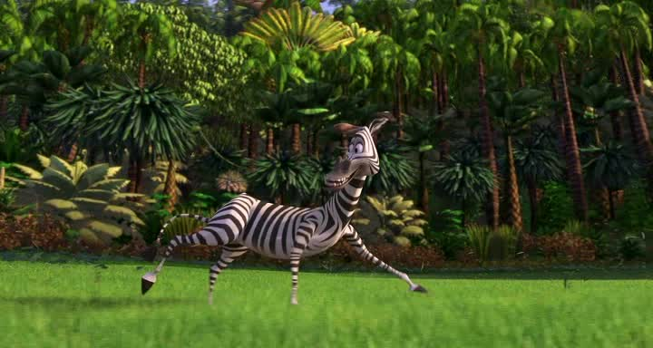 Мадагаскар - Madagascar