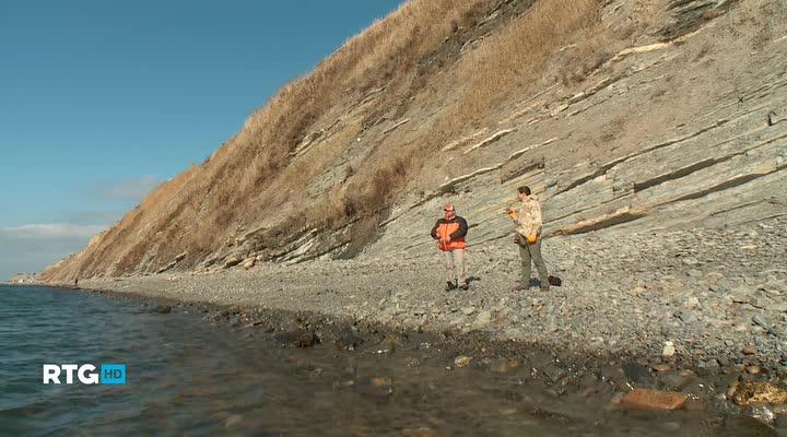 Ловля саргана в Черном море