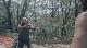 Лесной змей - Wyrmwood