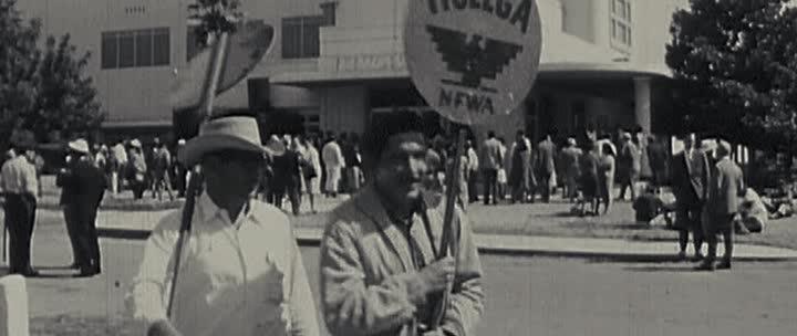 Сесар Чавес - Cesar Chavez