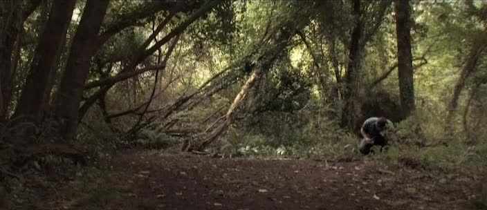 Таинственный сад - The Creeping Garden