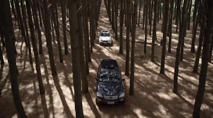 ���������� ��� - A Floresta Que Se Move