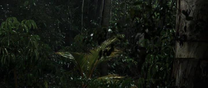 Пальмы в снегу - Palmeras en la nieve