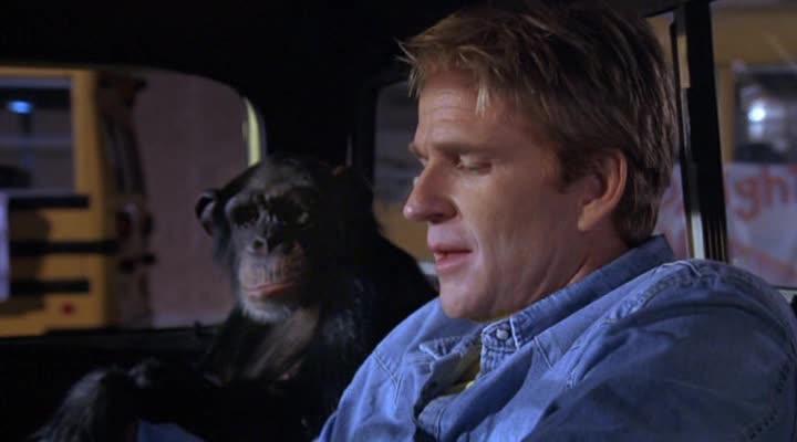 Волосатая история - Funky Monkey