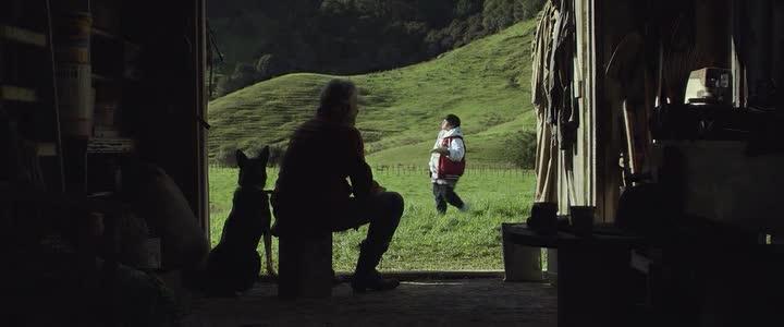 Охота на дикарей - Hunt for the Wilderpeople