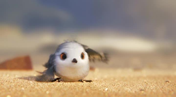 Песочник - Piper