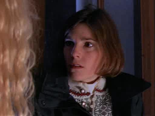Ее звали Никита. Сезон 1 - La Femme Nikita. Season I