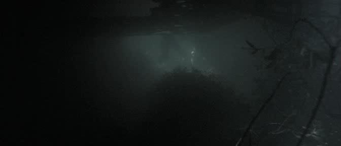Анаконда - Anaconda