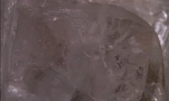 Замороженный калифорниец - Encino Man