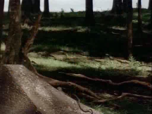 ������ � ������ ��������� - Hercules in the Maze of the Minotaur