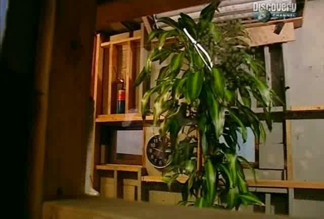 ����������� ������. ����� 4 - MythBusters. Season IV