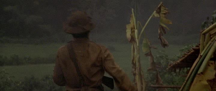 Охотник на оленей - The Deer Hunter