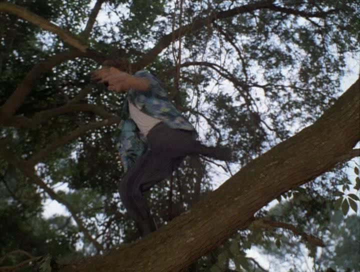 Эйс Вентура 2: Когда природа зовет - Ace Ventura: When Nature Calls