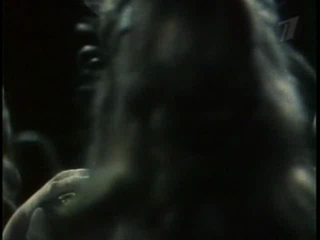 Юркины рассветы - Yurkiny Rassvety