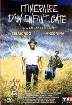 Баловень судьбы - Itineraire dun enfant gate