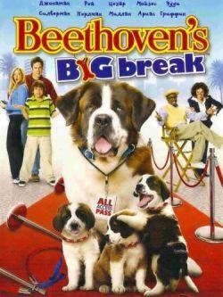 Бетховен: Большой бросок - Beethovens Big Break