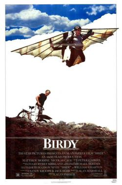 Птаха - Birdy