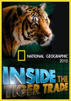 National Geographic. Взгляд изнутри. Миссия по спасению тигров - Inside. The Tiger Trade