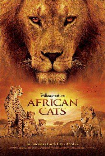 Африканские кошки: Королевство смелости - (African Cats)