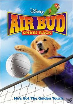Король воздуха: Возвращение - Air Bud: Spikes Back