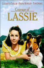 Храбрость Лэсси - (Courage of Lassie)