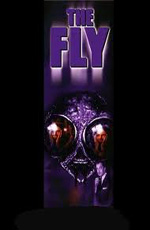 ���� - (The Fly)