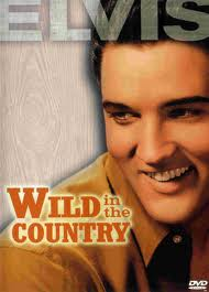 �������� (������) - (Wild In The Country)