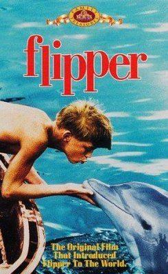 Флиппер - (Flipper)