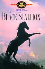 ������ ������� - (The Black Stallion)