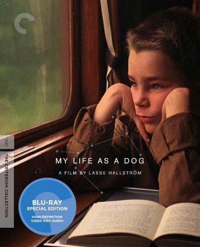 Моя собачья жизнь - (Mitt liv som hund)