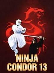 Ниндзя-кондор 13 - (Ninjas, Condors 13)