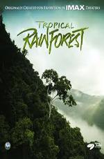 Тропический лес - (Tropical Rainforest)