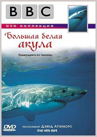BBC: Большая белая акула - (BBC: Great White Shark)