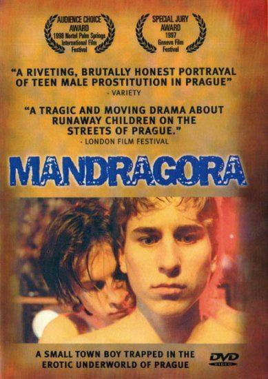 Мандрагора - (Mandragora)