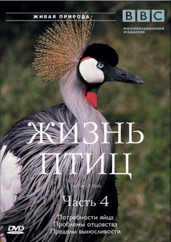 BBC: Жизнь птиц.Часть 4 - (BBC: The Life Of Birds)