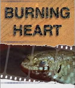 Горящее сердце пустыни - Burning heart