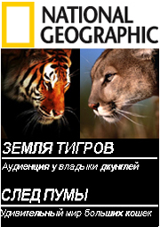 National Geographic: Земля тигров и След пумы - (National Geographic: Land of tiger (1984) Trail of the Cougar (2000))