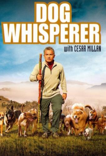 Переводчик с собачьего - (Dog Whisperer with Cesar Millan)