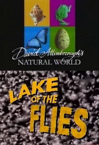 BBC: ������� � ��������: ��������� ����� - (LAKE of the FLIES)